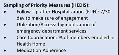 Figure 2: IMSNY BH Priority Measures - sampling
